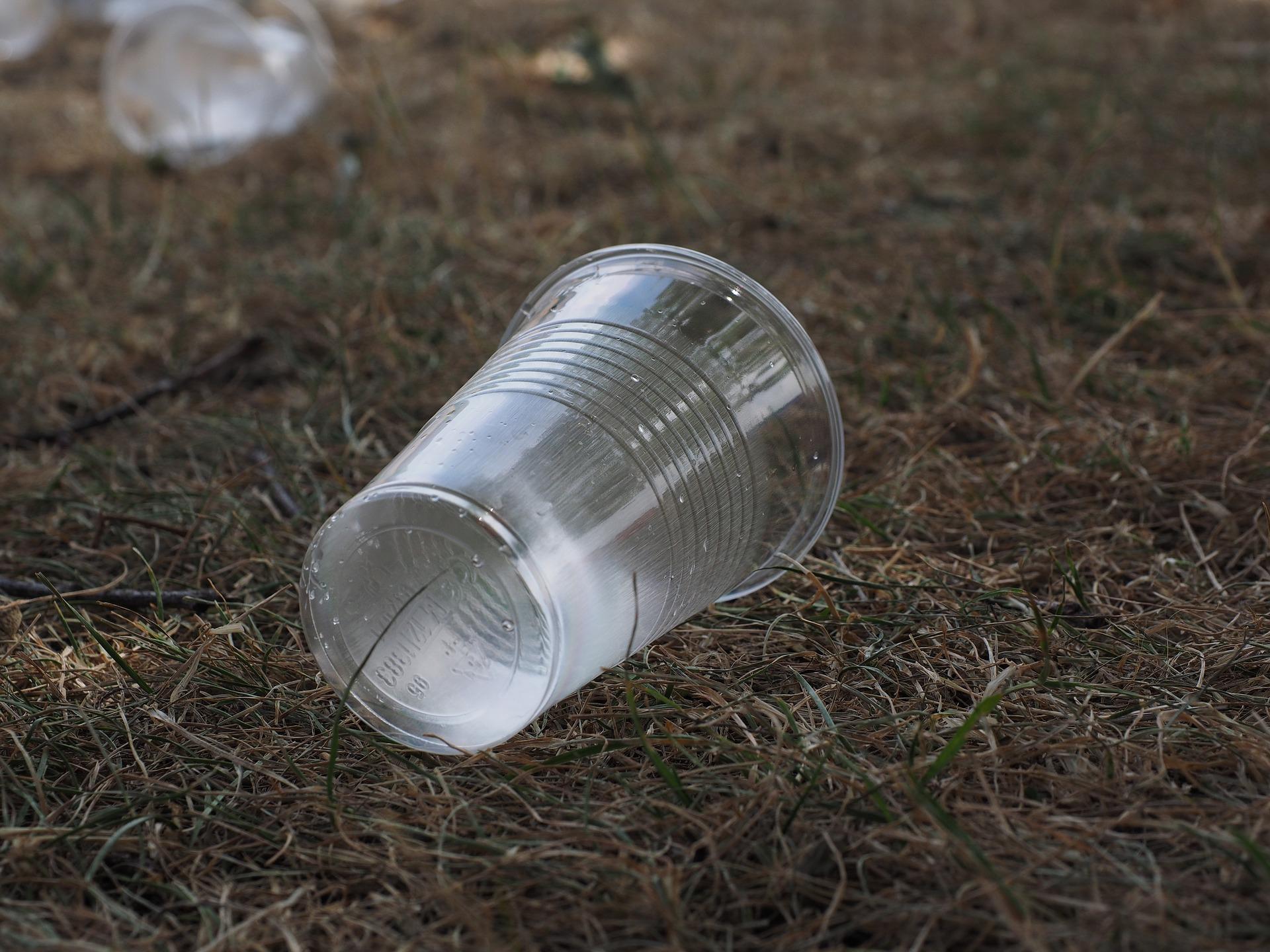 beverage-cups-2147903_1920