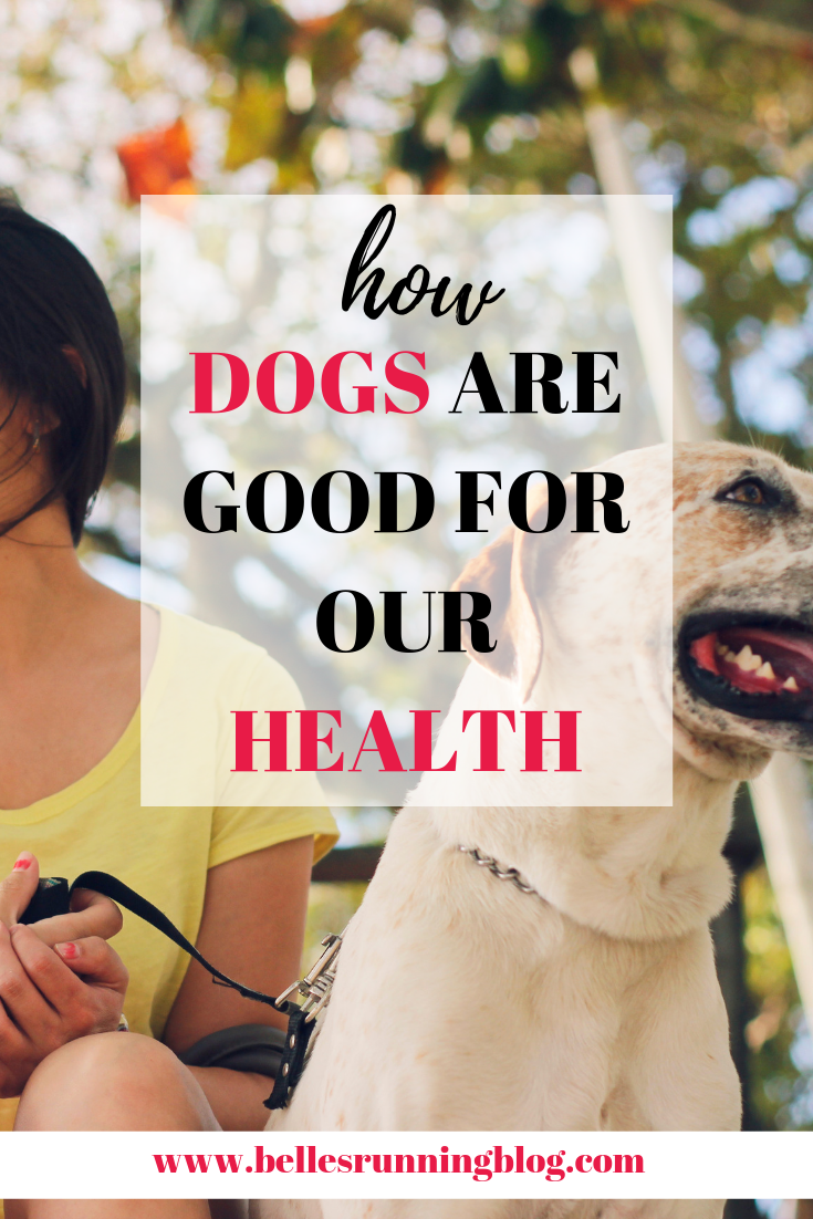 how dogs are good for our health | dogs improve mental wellbeing in people