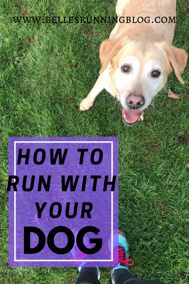 How to run with your dog | Beginners running tips with your pup